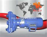DBY型电动隔膜泵,不锈钢隔膜泵,衬氟隔膜泵