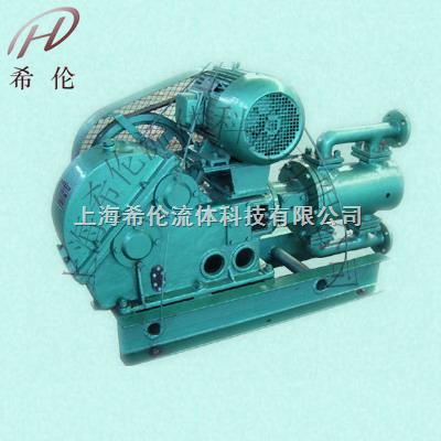 WBR电动高温往复泵