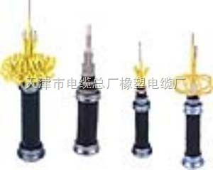 小猫牌VV电缆,VV电力电缆,标电缆价格