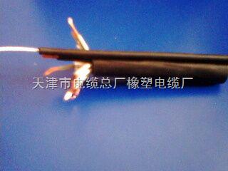 TVR22弹性体吊篮线TVR22电葫芦专用电缆