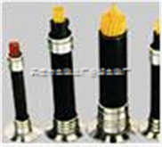 ZRKVVP22电缆-ZRKVVP22阻燃电缆-ZRKVVP22屏蔽电缆