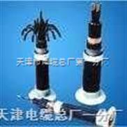 齐全-阻燃电缆ZR-KVV22 4*1.0阻燃电缆的厂